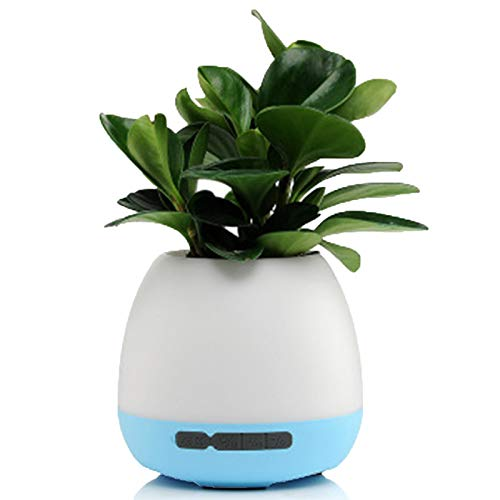 Music Flowerpot, Wireless Bluetooth Speaker Colorful Light, Smart Touch, Induction Flower Pot, Gifts, (Without Plant)