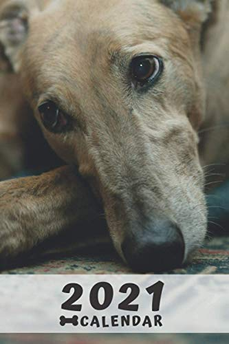 Greyhound Calendar 2021: Perfect for Notes and Planning, Monthly and Weekly (2021 Planner, Diary)