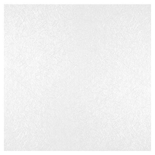 10 PVC Platten | Rasterdecke | foliert | wasserfest | Hexim | 62x62cm | YDB058