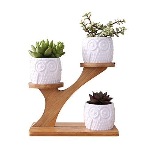 Macetero de cerámica con soporte de madera, maceta de suculentas para interiores y exteriores, con agujeros de drenaje, estilo creativo de búho
