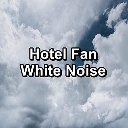 The Fan, Fan Sounds & Granular