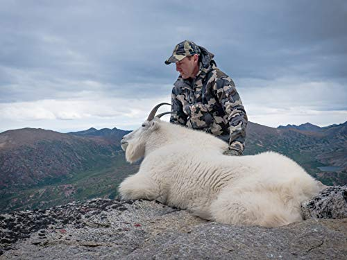 Better Early Than Late: Mountain Goat