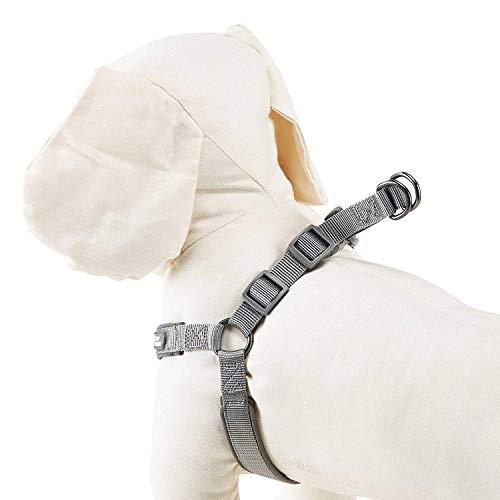 Louvra Hundegeschirr Brustgeschirre Gepolstert Hunde Geschirr Verstellbar Einfach aus Nylon für große mittlere kleine Hunde Haustiere Grau/Blau/Orange (S-M-L-XL)