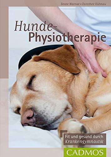 Hunde-Physiotherapie: Fit und gesund durch Krankengymnastik