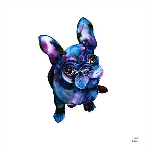 Posterlounge Cuadro de metacrilato 13 x 13 cm: Batdog de Zaira Dzhaubaeva