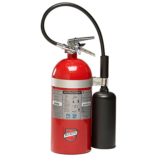 Buckeye 45600 Carbon Dioxide Hand Held Fire Extinguisher with Wall Hook, 10 lbs Agent Capacity, 6-7/8