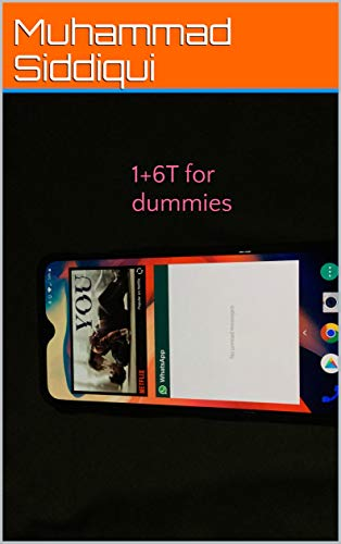 1+6T for dummies (English Edition)