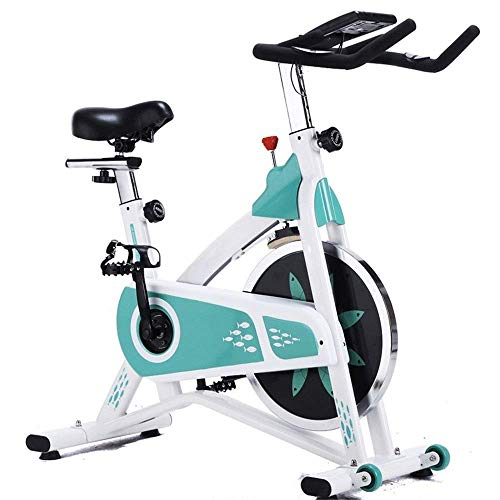 ZCYXQR Mute Sports Bike Fitness Equipment Home Pedal Fitness Training Bicicleta de Interior Ejercicio de Carga 200KG Ejercicio Bicicleta estática (Deporte de Interior)