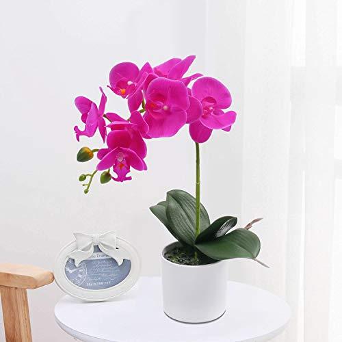 SHACOS Orquídeas Artificiales Flores Flor orquídeas Flor de Látex para Boda Oficina Hogar Decoración