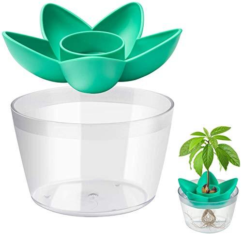 MOSRACY Avocado Pflanzset (mit Schüssel) - Pflanzen Sie Ihre eigene Avocado, Gartengeschenke für Mutter, Schwester und beste Freundin, Gartensamen, Geburtstagsgeschenke für Freundin (keine Samen)