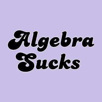 Algebra Sucks