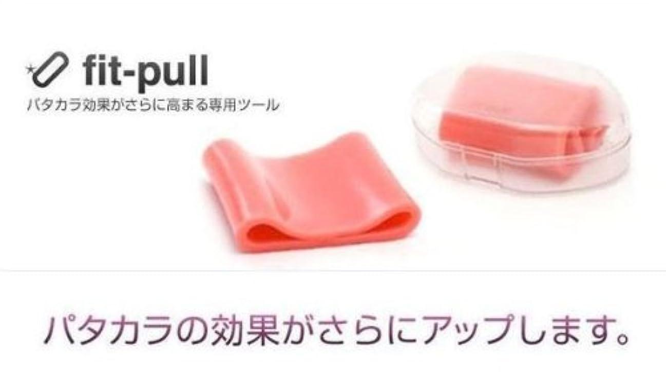 甘味電気ペチュランスフィップル fit-pull 1個