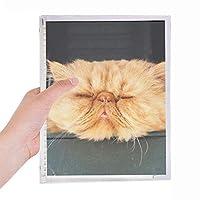 おかしい動物の黄色の猫を撃つ 硬質プラスチックルーズリーフノートノート