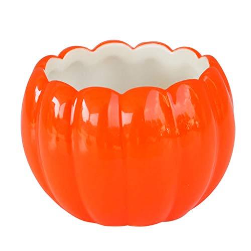 DEZ Kürbis keramische Schale Gourmet Kürbissuppe Bowl Kollektion Geschenk