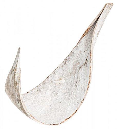 NaDeco Kokosblatt medium Galera weiß Kokosblatt gebogen weißes Palmen Blatt Kokosschale