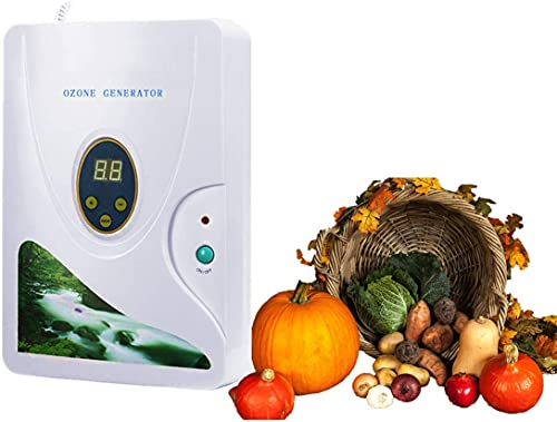 Generatore di Ozono Domestic 600 mg h, Ozonizzatore Acqua Timer Digitale Portatile Macchina di Disintossicazione per frutta verdura carne Hydro acqua dolce Rad-Timer - 1-60 min Con display a led
