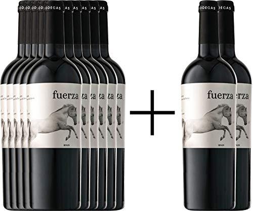 VINELLO 10+2 Weinpaket Rotwein - Fuerza Jumilla DO 2017 - Ego Bodegas mit Weinausgießer   trockener Rotwein   spanischer Rotwein aus Murcia   12 x 0,75 Liter