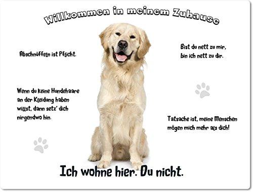 Merchandise for Fans Blechschild/Warnschild/Fun Türschild 20x30cm - Willkommen in Meinem Zuhause - Motiv: Golden Retriever/Labrador sitzend - 01