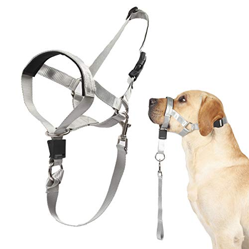 Dog Head Collar, No Pull Training Tool for Dogs on Walks, Includes Free Training Guide, Soft Padding, 5 (XL, Grey)