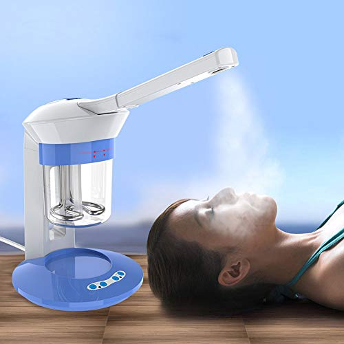 MZBZYU 2 In 1 Gezicht Facial Steamer Haartherapie Steamer Ozon Stomen Ion Sprayer Hot Mist Hydraterend voor Persoonlijke Schoonheid Sauna SPA thuis of Salon