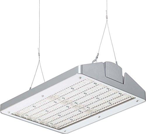 Philips Leuchte PLS LED-Flächenleuchte si BY471P #89930300 250S/840 PSR NB GC Hallen-Reflektorleuchte 8718291899303