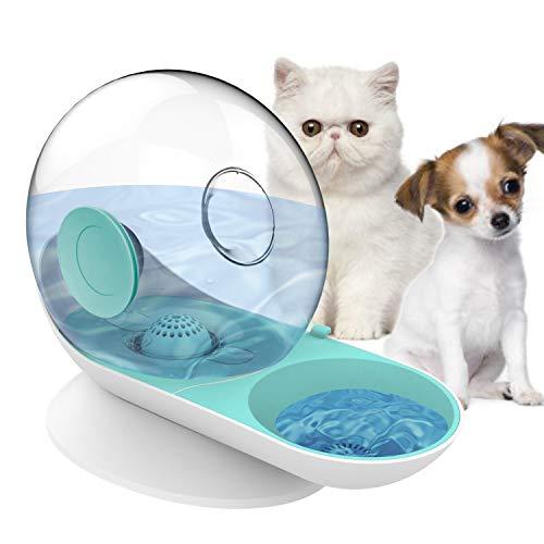 HappyCat Wasser- und Futternapf-Set, für kleine Haustiere, für Hunde und Katzen, mit automatischem Wasserspender, Grüne Schnecke