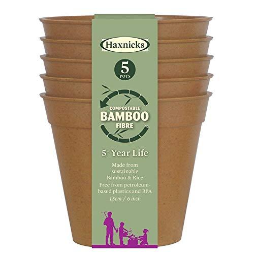 Haxnicks Lot de 5 pots et/ou soucoupes en bambou biodégradables et compostables