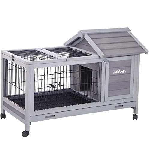Hutch for Large Rabbit