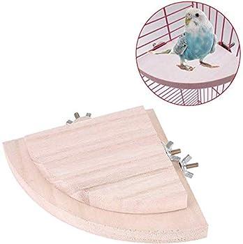 HEEPDD 2 Pcs Perchoir Perroquet, Perche pour Les Oiseaux Plateforme D'éventail Reste Stand Coin pour Petit Animal Chew Bite Jouets pour Perroquet Hamster