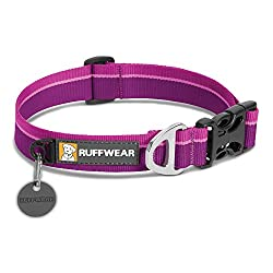 Ruffwear dog collar for Dachshunds