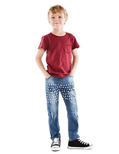 HOLLAGLEE Star Ripped Skinny Boys Jeans Slim Fit Pants for Kids and Big Boys