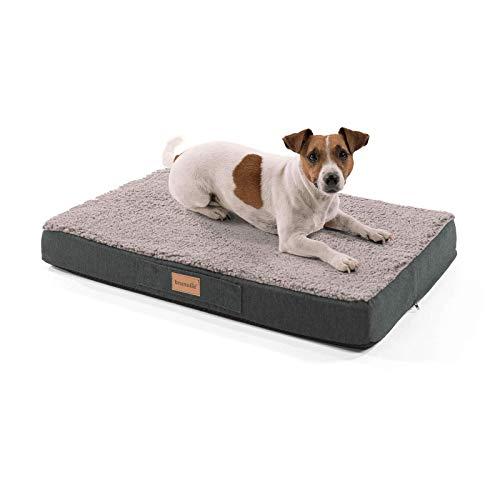 brunolie Balu kleines Hundebett in Grau, waschbar, orthopädisch und rutschfest, kuscheliges Hundekissen mit atmungsaktivem Memory-Schaum, Größe S (72 x 50 x 8 cm)