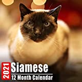 Calendar 2021 Siamese: Cute Siamese Cats Photos Monthly Mini Calendar With Inspirational Quotes each Month