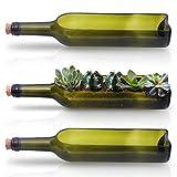 BELLE VOUS Weinflasche Blumentopf Deko (3 STK) - 22,5cm x 7cm Öffnung Glas Flaschen Vasen Blumen Topf für Sukkulenten Pflanzen, Kaktus, Blumen Dekoration, Terrarium, Fensterdeko, DIY Kernstück