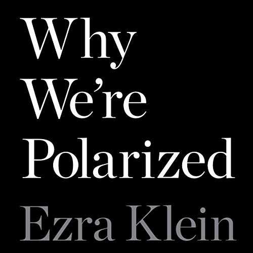 Why We're Polarized cover art