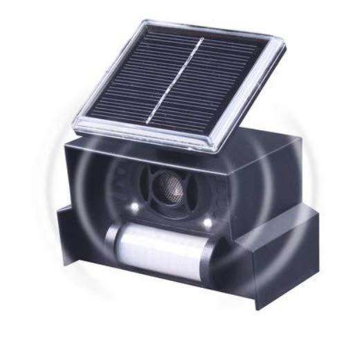 Gardigo Solar Vogelabwehr elektronische Vogelscheuche mit Ultraschall und Blitzlicht