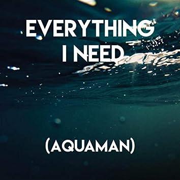 Everything I Need (Aquaman)