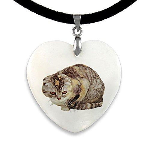 Gato Scottish Fold colgante nácar en forma de corazón