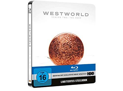 Westworld - Staffel 2 (Limited Edition Steelbook) [Blu-ray]
