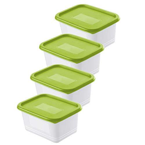 Rotho Domino 4er-Set Gefrierdosen 0.75l mit Deckel, Kunststoff (PP) BPA-frei, grün/transparent, 4 x 0,75l (15,7 x 11,8 x 8,0 cm)