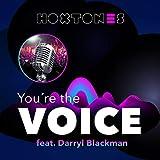 You're the Voice (Hoxtones & Dfe Radio Mix)