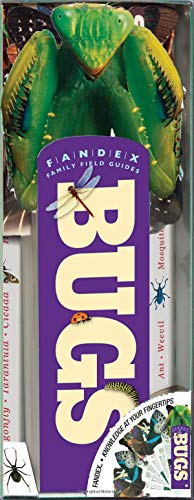 Fandex Family Field Guides: Bugs
