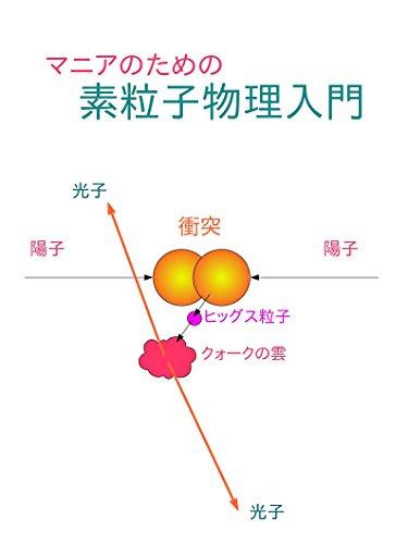 マニアのための素粒子物理入門