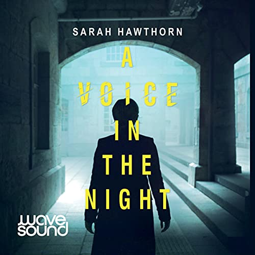 A Voice in the Night cover art