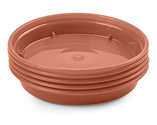 Whitefurze G04114 Garden Pot Saucer for 7.5/ 10cm Pot - Terracotta (Set of 5)