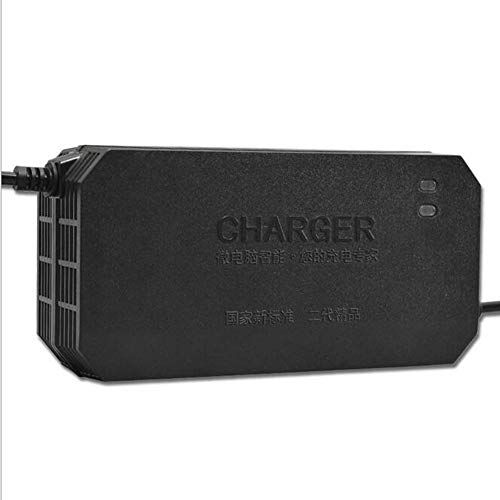 GOZAR Cargador De Batería del Litio Lifepo4 De 48V 2.5 A 20Ah para La Bici Eléctrica De La Vespa De La E-Bici