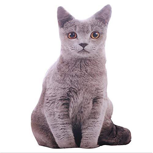 GFEU Gefülltes 3D-Katzen-Kissen, Simulationskissen, lustige Katzenkissen, Dekoration für Zuhause, Bett, Wohnzimmer, Büro (Katze, grau)