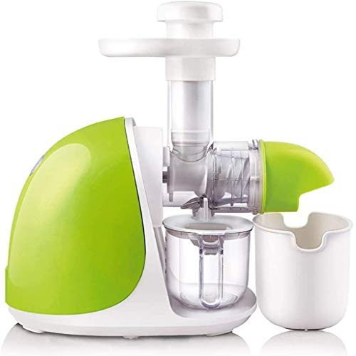 ECSWP Juicer Machines, Professional Cold Press Juicer Extractor Machine, Quiet Motor, Reverse Function, Slow Masticating Juicer with Brush, for Fruit and Vegetable Juice