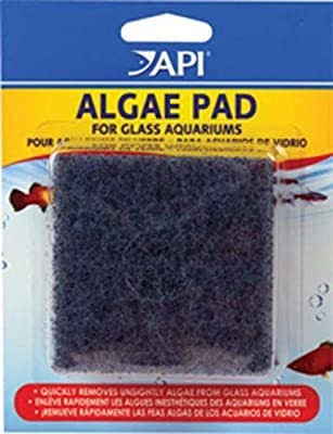 API HAND HELD ALGAE PAD For Glass Aquariums 1-Count Container from API