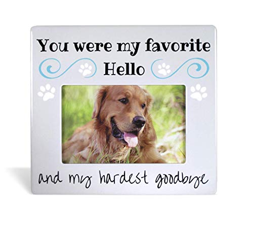 BANBERRY DESIGNS Pet Remembrance Gifts - Pet Memorial Picture Frame - Bereavement Photo Frame for...